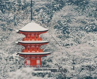 Japan: Winter Wonderland