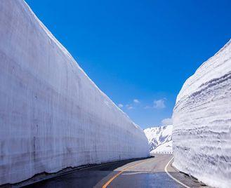 Japan: Tohoku Cherry Blossoms And Kurobe Alpine Route