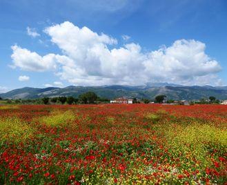 Italy Coast To Coast Ride: Puglia To Amalfi Coast