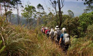 Spice Trails Of Kerala