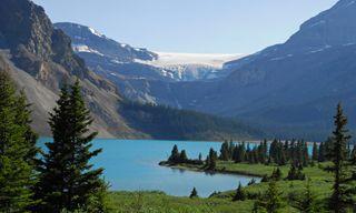 Canadian Wildlife & Vancouver Island - Reverse