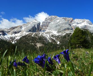 Self-Guided Walking In The Italian Dolomites