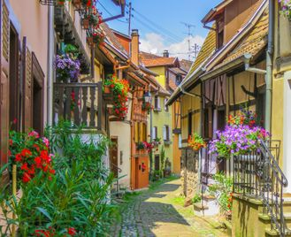 Wine Villages Of Alsace Cycling