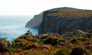 The Algarve From West To East, Self-Guided Walk