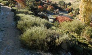 Walking In The Sierra De Gredos