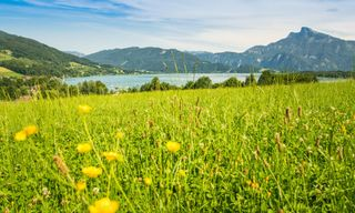 Self-Guided Walking In Austria's Lake District