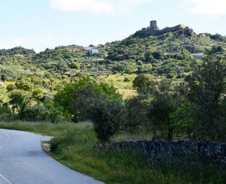 Self-Guided Cycling In The Douro Valley