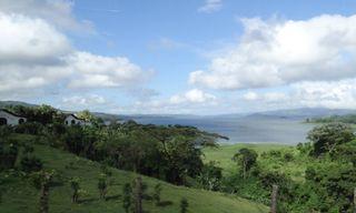 Costa Rica Wildlife Walk