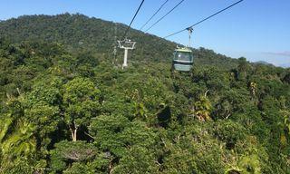 Wild Queensland