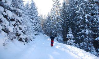 Winter Walking In The Austrian Tyrol