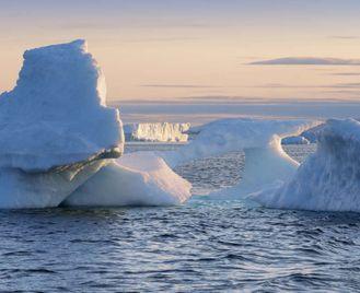 West Greenland Explorer - M/V Greg Mortimer