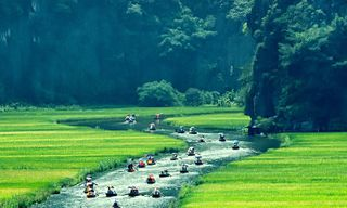 Best of the North (Vietnam)