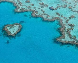Queensland's East Coast Wildlife & Nature