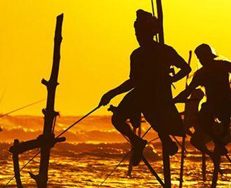 Unforgettable Sri Lanka