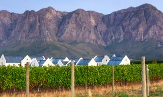 Cape Town & Winelands Highlights