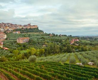 Local Living Italy - Coastal Tuscany