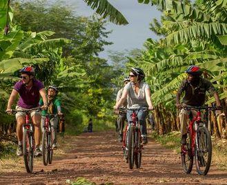 Active Safari & Zanzibar Experience