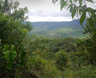 La Selva Lodge - 5 Day Independent Adventure