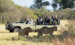 Botswana Mobile Safari | 13 days | £4,945pp