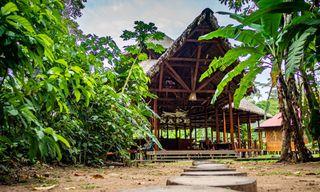 Peru: Amazon Jungle Short Break