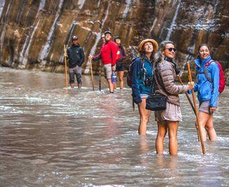 USA National Parks Explorer