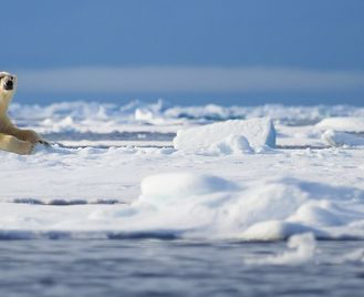 Spitsbergen Photography Adventure