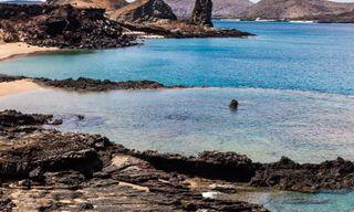 Galapagos Voyager: Central Islands (Grand Queen Beatriz)