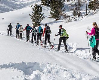 Canadian Rockies Winter Adventure