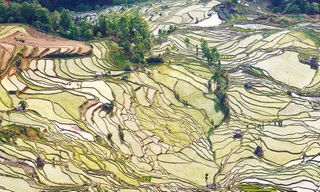 Yunnan Adventure