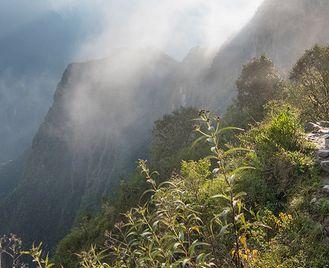 Inca Trail & Amazon Adventure