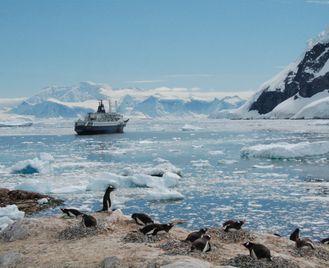 Signature Antarctica: Highlights Of The Antarctic Peninsula