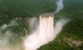 Guyana Wildlife: South America's Wild Frontier