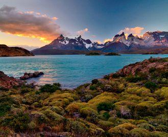 Lapwing: Patagonian Odyssey