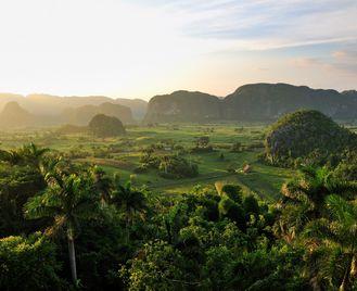 Parakeet: Cuba Beyond The Beach