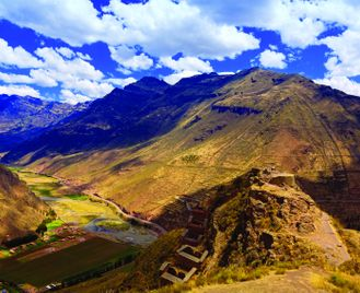 Pato Andino: Panorama Of The Andes
