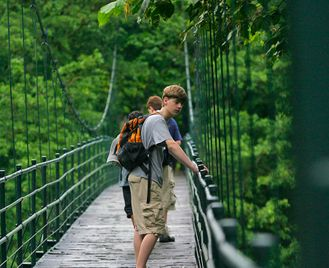 Family Costa Rica: Jungle Walks And Turtle Spotting