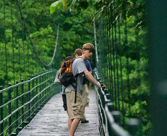 Family Costa Rica: Jungle Walks And Turtle Spotting