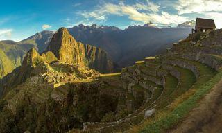 Swift: Ultimate Highlights Of Peru