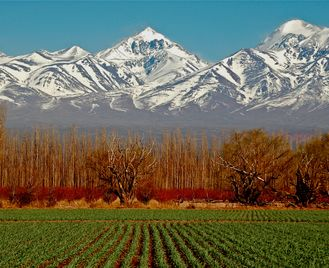 Luxury Argentina: Vineyards, Glaciers And Gauchos