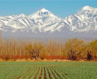 Luxury Argentina: Vineyards, Glaciers And Gauchos