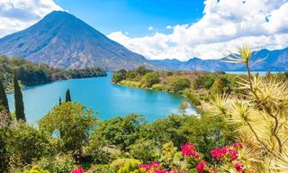 Tropicbird: Highlights Of Central America