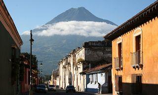 Kinkajou: Best Of Guatemala And Belize