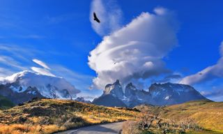 Self-Drive Patagonia: The Open Road To Torres Del Paine