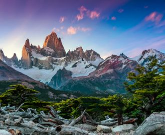 Nandu: Peaks And Plains Of Patagonia