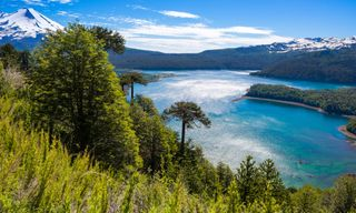 Tangara: Blue Lakes And Emerald Coasts