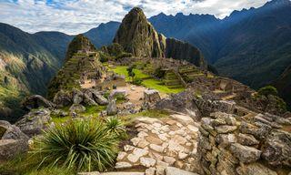 Condor: Peru In Depth