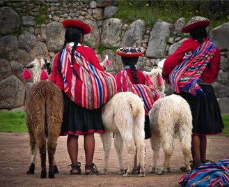 Pelicano: Essential Peru