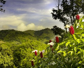 Signature Costa Rica: The Natural Highlights