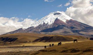 Active Ecuador: Andean Hikes And Cotopaxi Volcano