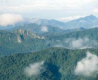 Guatemala And Honduras Uncovered